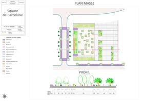 Plan masse Autocad